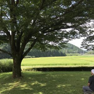 日々是好日 夏休み /猪の倉温泉/ゲストハウス イロンゴ/フィリピン料理