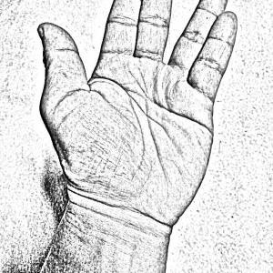 左右均等は手の内と取り懸けに適応するか?