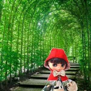 赤ずきんちゃんの旅!/どうか早くに台風の被害から復旧できますように……。