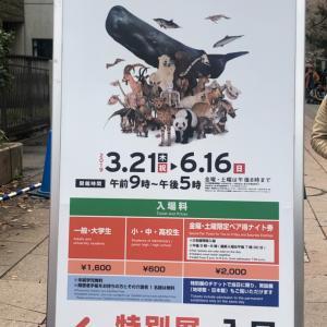 「大哺乳類展2」に行ってきた!