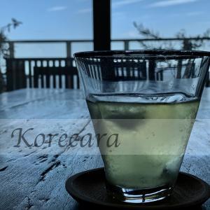|| 割れない&熱くない&シンプル♪『透明急須』で広がるお茶ワールドが美味しすぎる ||