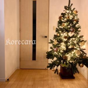 || クリスマスツリー2019♪ キュンとくるオーナメントが見つかるショップ ||