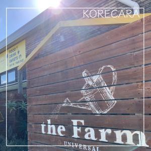 || ツボすぎるグリーンショップ『the Farm universal』! 念願のグリーンを見つけた!! ||
