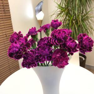 サロンのお花 (東京、明大前安心の美容電気脱毛サロンアンヴィー)