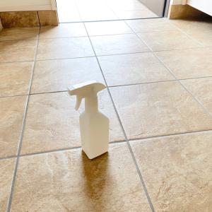 最近お気に入りのお掃除用品で玄関掃除!