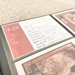 【無印良品】2年悩んで大決心!8年分のアルバムをリセット、L版からましかくに。