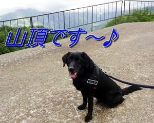 「海王丸パーク」をお散歩~♪