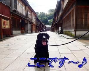 最後は・・「 金沢ひがし茶屋街 」
