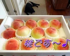 今年も「 桃 」を頂きます~♪