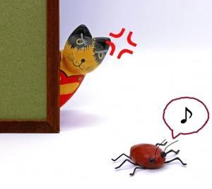 ゴキブリに1/3ロールも使う夫!