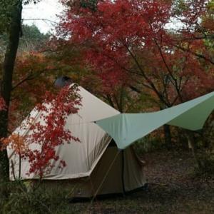 キャンプ場にカオスを見る