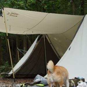 キャンプ場内外を歩き、自然を感じる。