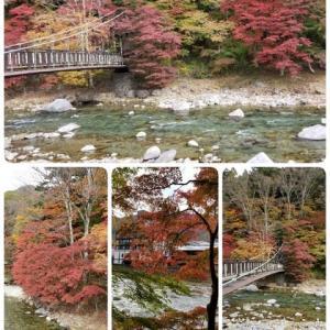 福島へ紅葉旅行 吊り橋