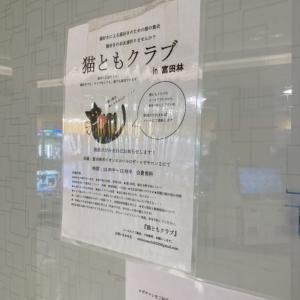 7/25第11回猫ともクラブイン富田林市開催しました。