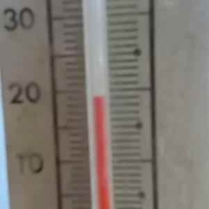 うさぎ 初の19℃