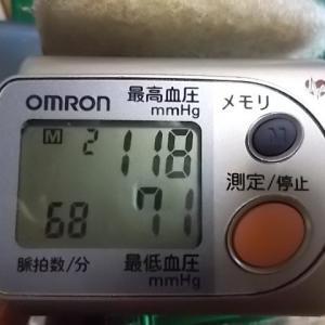 うさぎ 至適血圧