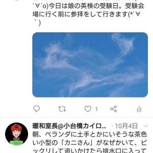 「カニ」さんの予言は台風だった。