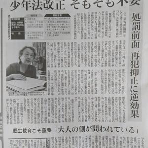 石井小夜子弁護士 本日の東京新聞記事から
