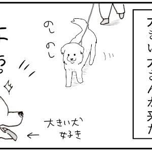 タロさんor赤ちゃん