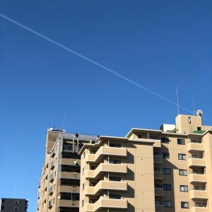 飛行機雲     凄い青空