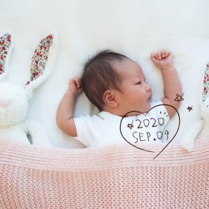 新生児フォト、ニューボーンフォトとやらを。