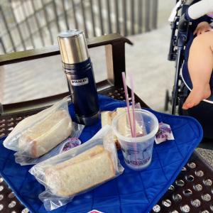 HortPark ピクニックで元気を注入。