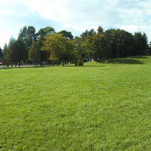 ご近所公園
