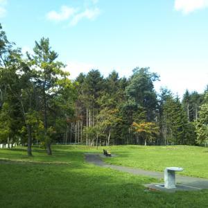 近所の緑地公園