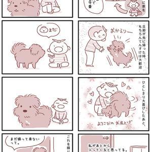 【犬漫画】待ってくれる犬はたまらなく可愛い。