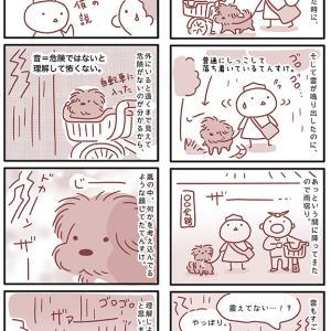 【犬漫画】雷恐怖症克服?その2