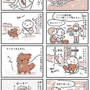 【犬漫画】丹波篠山~舞鶴旅行その6【天橋立】