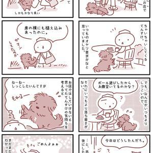 【犬漫画】愛犬の要求がまだまだわからない飼い主