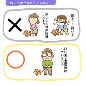 【イラスト付き】飼い主が新型コロナウィルスに感染した場合のペット対策まとめ