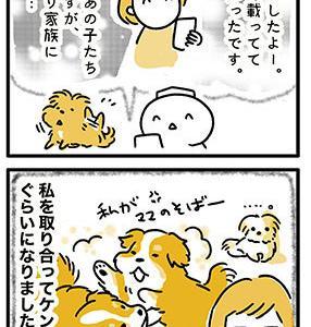 【犬漫画】元繁殖犬の保護犬友達がさらに幸せになっているという話