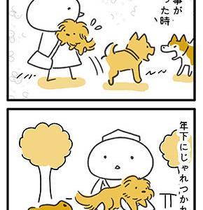【犬漫画】抱っこは自分のタイミングで。