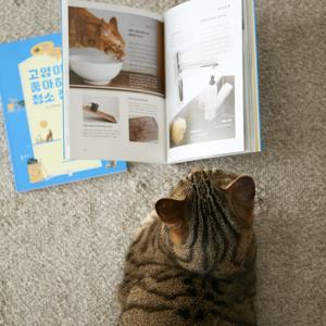 韓国版『猫がよろこぶ掃除・片付け』が出版されました