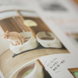 【雑誌掲載】ねこのきもち7月号「心地いい猫トイレ」