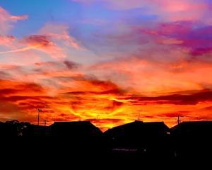 駆除に向かう途中…夕陽が綺麗!