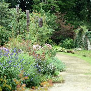 ガーデンで撮影があります!