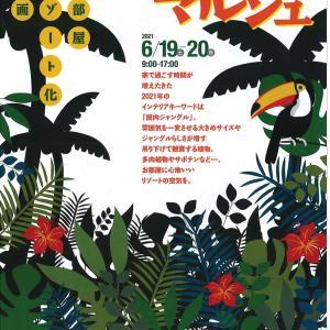 名古屋イベント「ジャングルマルシェ」出店のお知らせ