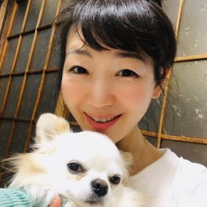 愛犬チロちゃんの4歳のお誕生日♡