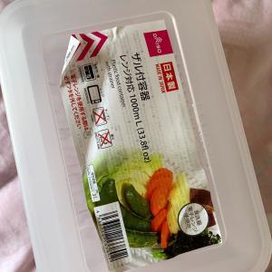 水耕栽培のレタスを自作液肥で育ててみる 5