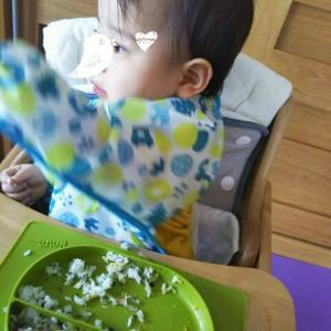 【1歳1ヶ月と8日目】最近のお食事