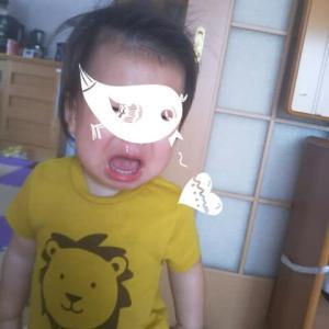 【1歳2ヶ月と19日目】危険なひー