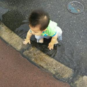 【1歳3ヶ月と6日目】天然(?)水遊び