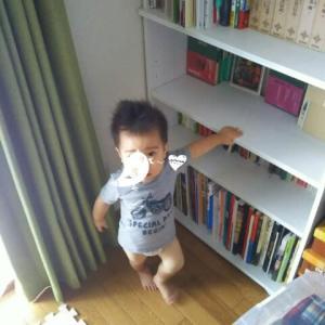 【1歳3ヶ月と12日目】本棚整頓しなければ~
