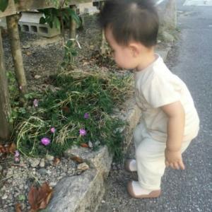 【1歳3ヶ月と19日目】疲労感倦怠感でダウン