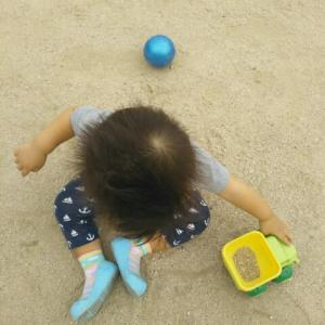【1歳4ヶ月と25日目】外装工事ネタ