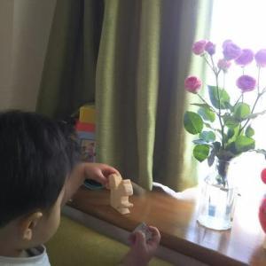【1歳8ヶ月と29日目】チューリップの次は