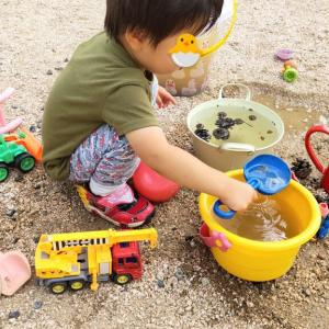 【2歳5ヶ月と5日目】言語以外の発達面